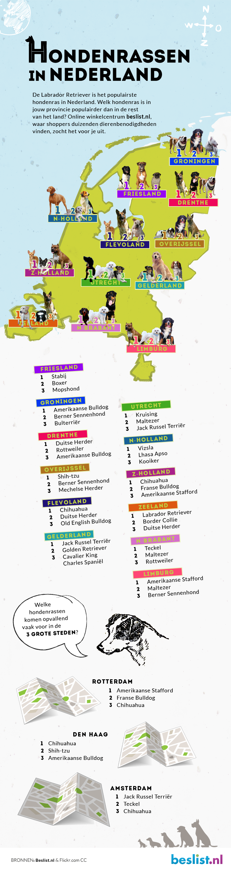 Infographic - Hondenrassen