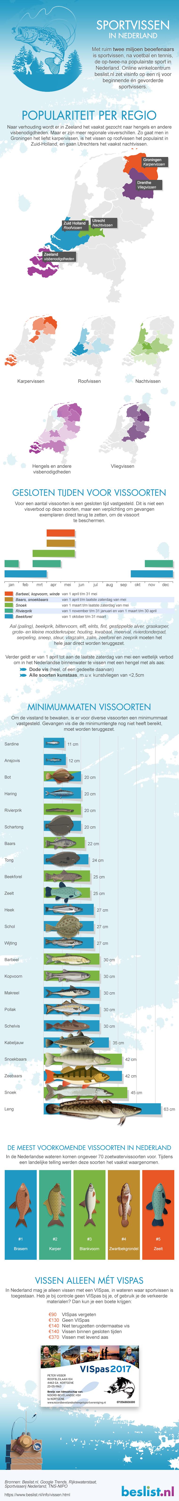 Infographic Vissen in Nederland